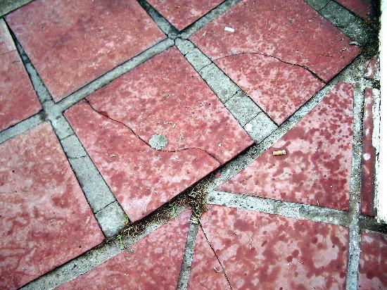 Cómo reemplazar baldosas dañadas en un piso