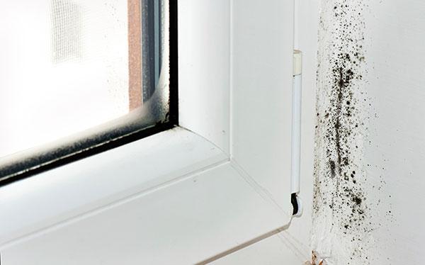 Humedad por condensaci n en el hogar causas y prevenci n - Evitar condensacion ventanas ...
