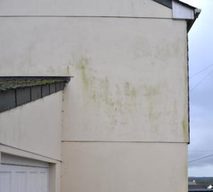 pared exterior