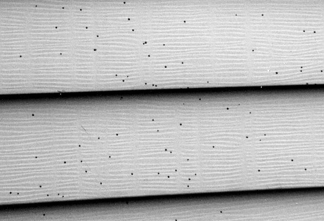 Cómo quitar manchas de hongos de un revestimiento de vinilo en paredes exteriores